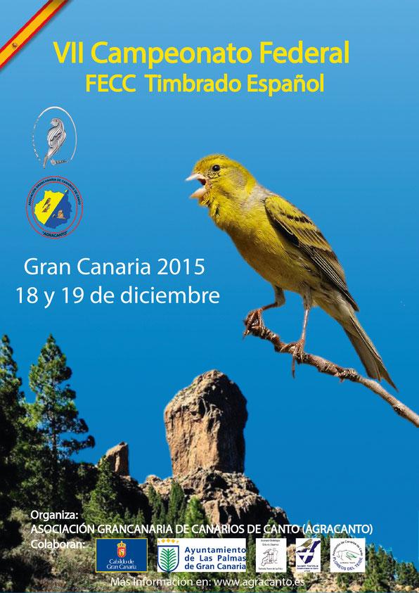 VII CAMPEONATO FEDERAL - GRAN CANARIA 2015
